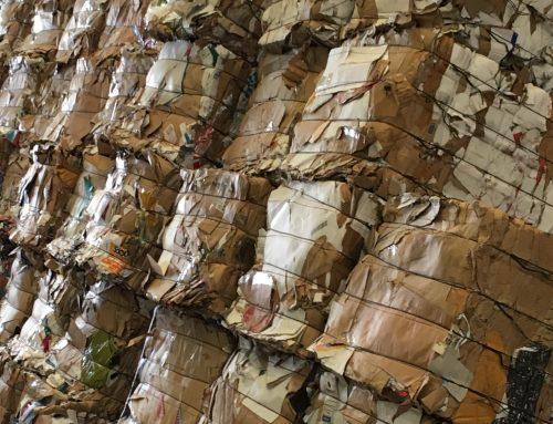 La industria papelera española recicló casi 5 millones de toneladas de papel y cartón en 2018