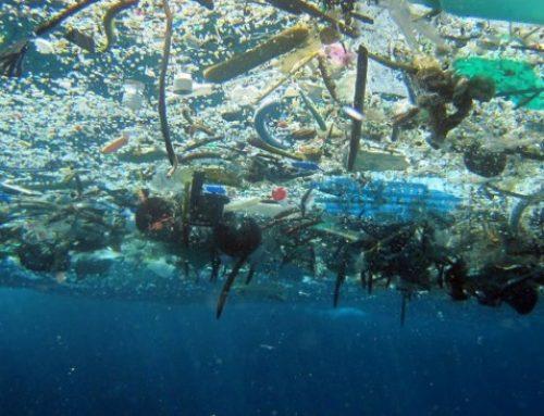 Salvamento Marítimo lanza una campaña para reducir la basura marina en origen
